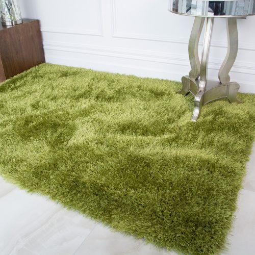Modern Trendy Green Shaggy Rug